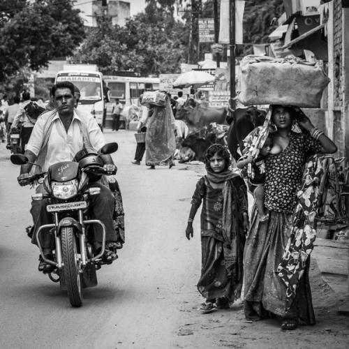 Pushkar 2013