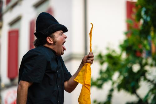 Festival Art de Rue Sion 2014